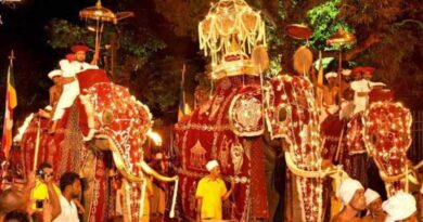 The final Randoli procession will be held on the 22nd of August